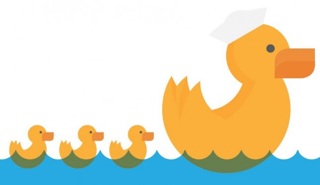 Ducks In A Row_Visually Guide (1)