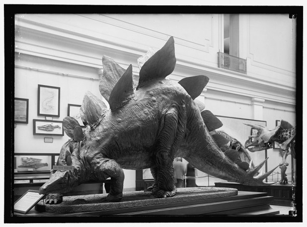Dinosaur Smithsonian_Library of Congress