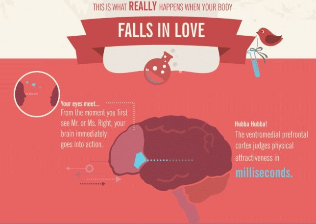 Best Infographic Nominee: 15_Propoint_This Is Your Body In Love